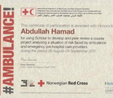 (analysis of emergencies facing paramedics) English II